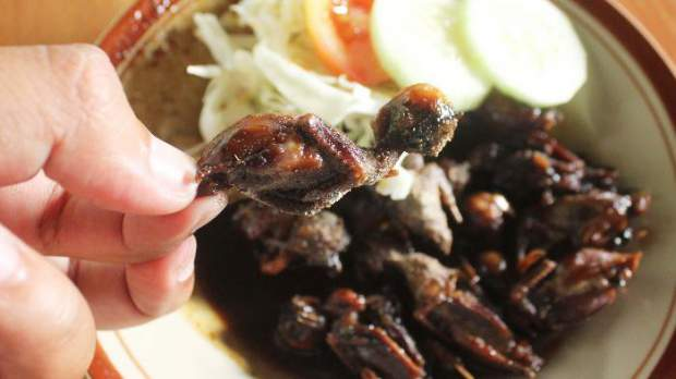 fried bat kelelawar goreng bantul kuliner ekstrem